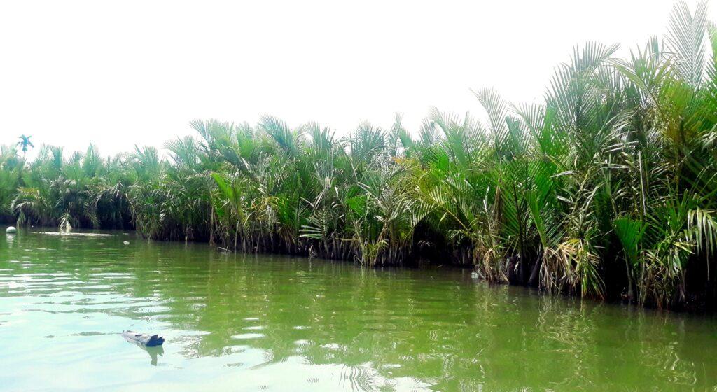 mica deltă a mekongului hoi an