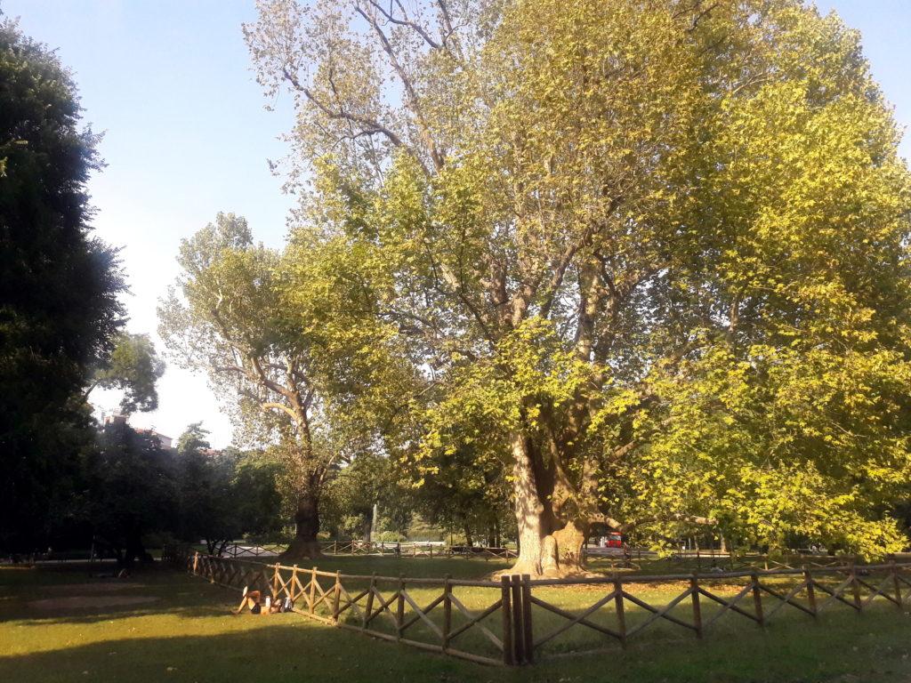 indro montanelli park milano italia