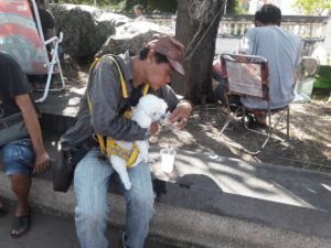 thailand people samut prakan temple fair travel southeast asia