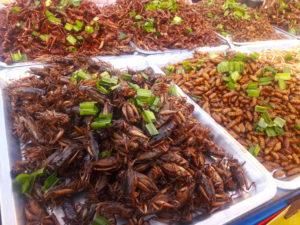 thailand food maggots samut prakan temple fair travel southeast asia