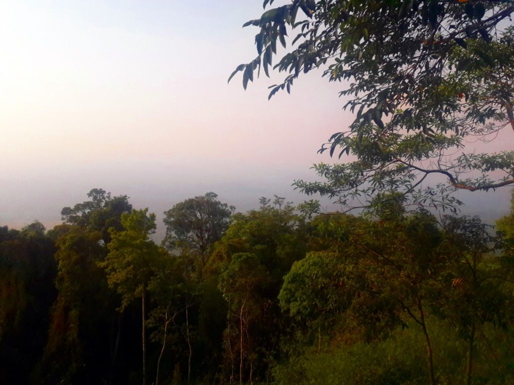 viewpoint parcul national khao yai thailanda