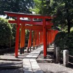 torii tunnel nezu shrine yanesen