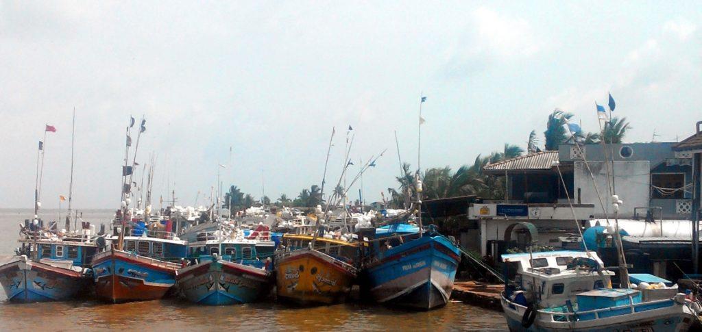 barci pescuit negombo sri lanka